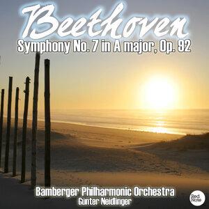 Bamberger Philharmonic Orchestra & Günter Neidlinger 歌手頭像