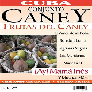 Conjunto Caney 歌手頭像
