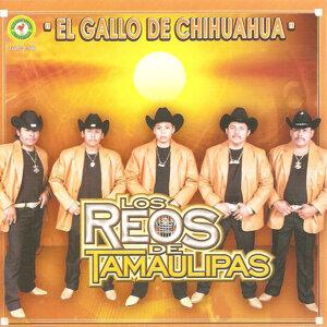Los Reos De Tamaulipas 歌手頭像