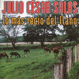 Julio Cesar Salas 歌手頭像