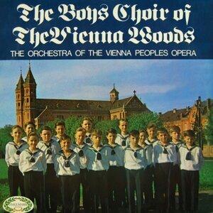 The Boys Choir Of The Vienna Woods