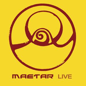 Maetar 歌手頭像