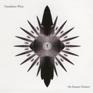Dandelion Wine 歌手頭像