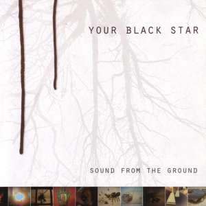 Your Black Star 歌手頭像