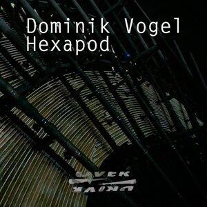 Dominik Vogel 歌手頭像