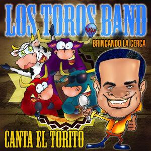 Los Toros Band 歌手頭像