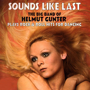 The Helmut Gunter Orchestra 歌手頭像