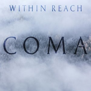 Within Reach 歌手頭像