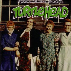Turtlehead 歌手頭像