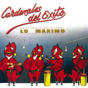 Cardenales del Exito