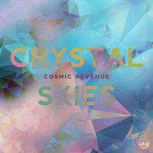Cosmic Revenge