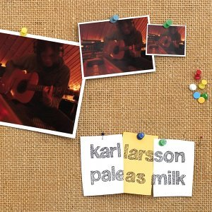 Karl Larsson 歌手頭像