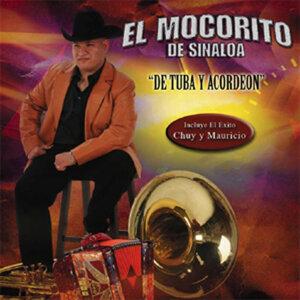 El Mocorito De Sinaloa 歌手頭像