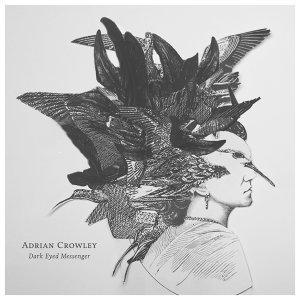 Adrian Crowley Artist photo