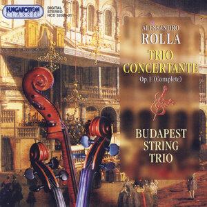 Budapest String Trio - Ferenc Kiss, Sándor Papp & Balázs Kántor 歌手頭像