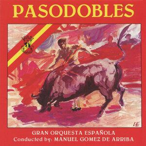 Gran Orquesta Española 歌手頭像