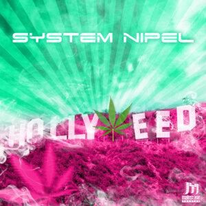 System Nipel 歌手頭像