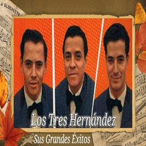 Los Tres Hernández 歌手頭像