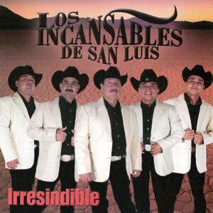 Los Incansables De San Luis 歌手頭像