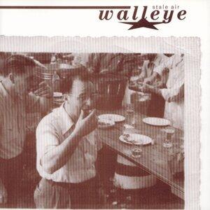 Walleye 歌手頭像