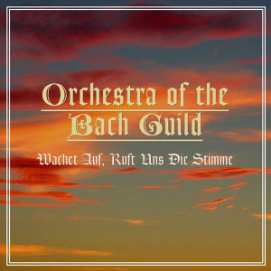 Orchestra Of The Bach Guild 歌手頭像