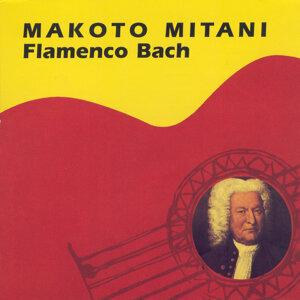 Makoto Mitani 歌手頭像