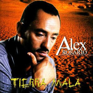Alex Rosario 歌手頭像