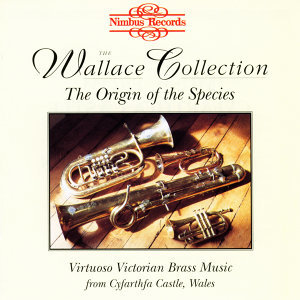 The Wallace Collection 歌手頭像