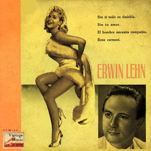 Erwin Lehn And His Orchestra 歌手頭像