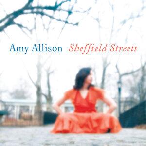 Amy Allison 歌手頭像