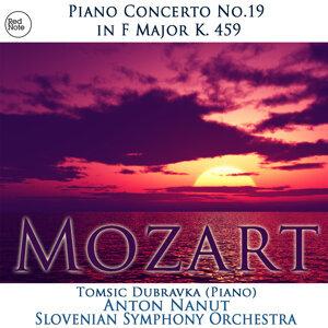 Slovenian Symphony Orchestra & Anton Nanut 歌手頭像