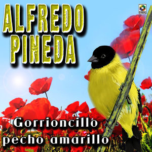 Alfredo Pineda 歌手頭像
