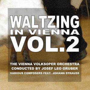 The Vienna Volksoper Orchestra 歌手頭像