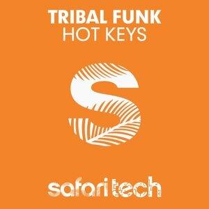 Tribal Funk 歌手頭像