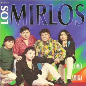 Los Mirlos 歌手頭像