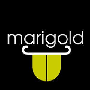 Marigold 歌手頭像