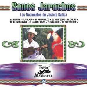 Sones Jarochos and Los Nacionales De Jacinto Gatica 歌手頭像