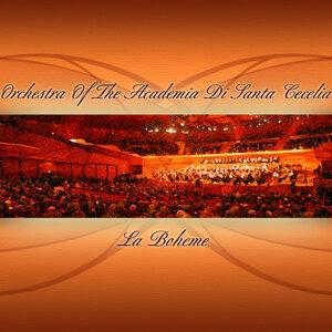 Orchestra Of The Academia Di Santa Cecelia 歌手頭像