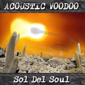 Acoustic Voodoo 歌手頭像