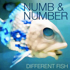 Numb & Number