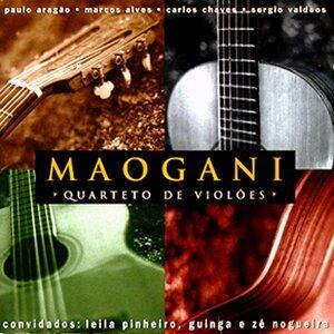 Maogani 歌手頭像