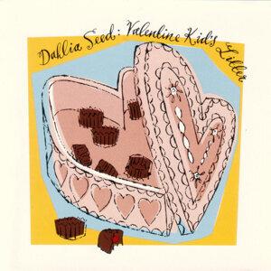 Dahlia Seed