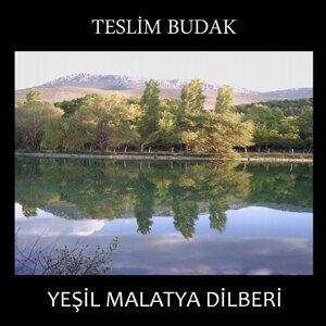 Teslim Budak 歌手頭像