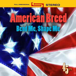 American Breed 歌手頭像