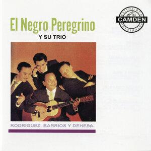El Negro Peregrino Y Su Trio