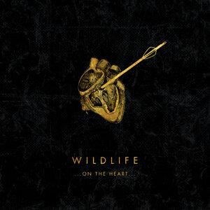Wildlife 歌手頭像