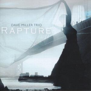 The Dave Miller Trio 歌手頭像