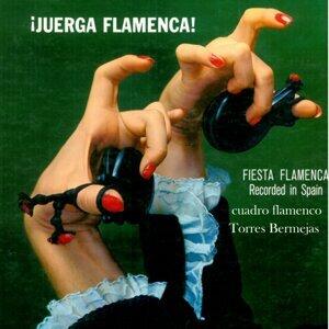 Cuadro Flamenco Torres Bermejas 歌手頭像