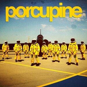 Porcupine 歌手頭像