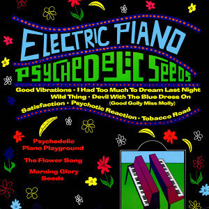 Electric Piano Playground 歌手頭像
